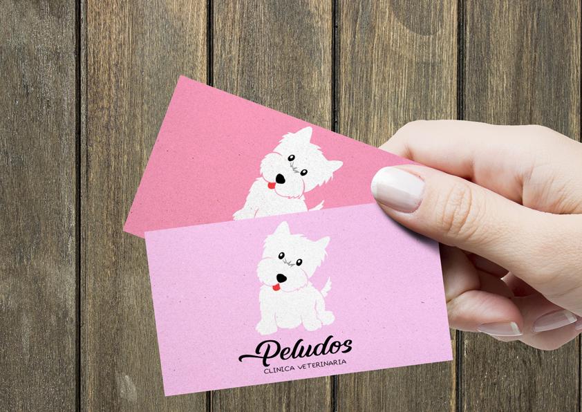 Estudio Creativo, diseño gráfico, Branding, Web, Diseño Logotipo, tarjetas de visita, Madrid, Clínica Veterinaria, Westie, Westy, West Highland White Terrier, Perros, animales, 8 Purple.